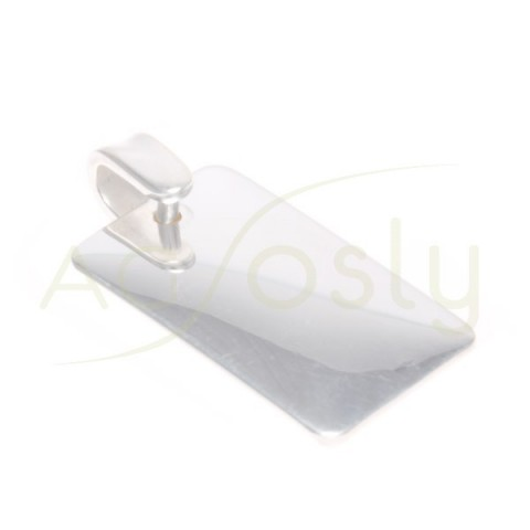 Placa plata lisa.35x21mm